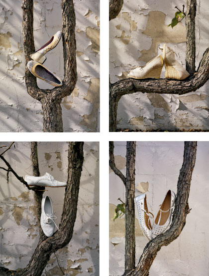 anthropologie art direction for shoe tree